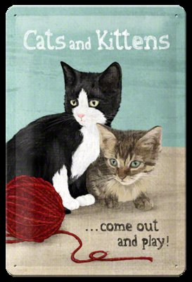 Cats and kittens come out and play 3D 20x30CM